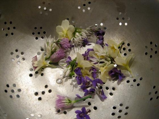 salad flowers