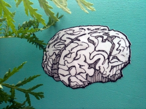 brain drawing