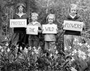 protect the wild flowers kids