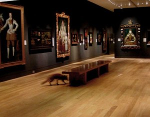 fox in the national gallery, artwork by francis alys