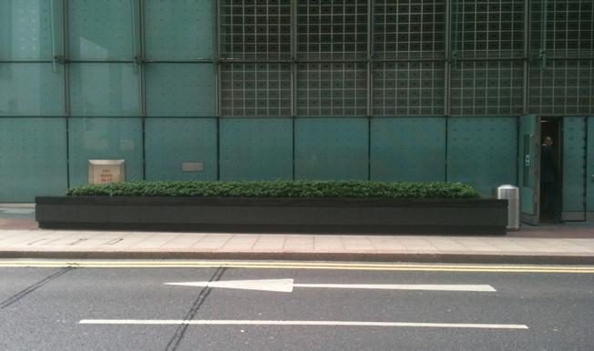 Trough of plants