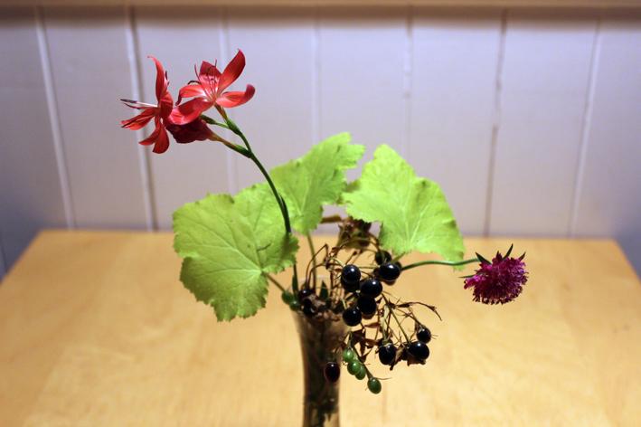 December Flowers 2