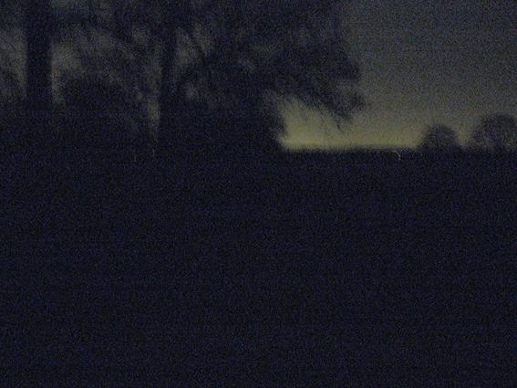 Richmond Park at night
