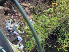 Rubbish left by the Duke's River just before Mogden