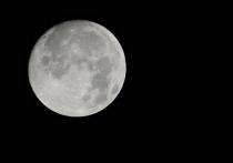 Vesak Full Moon 2015 from Window to Nature The Weekly Environmental Diary by Malaka Rodrigo