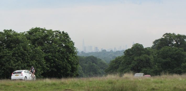 The view to Central London from Sawyers Hill in Richmond Park
