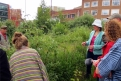 Perimeter Permabulations with Helen Stratford