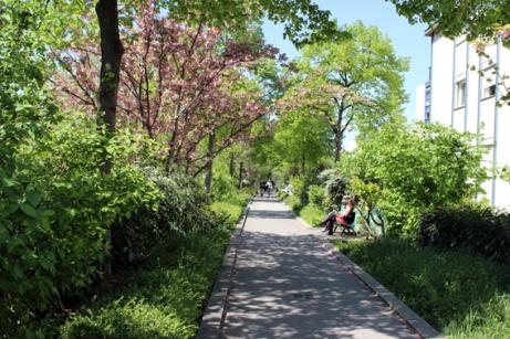 3. Walkway PP
