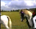 Anna Best - A Real Pony For a Bridle