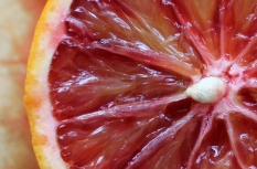 Blood Orange centre