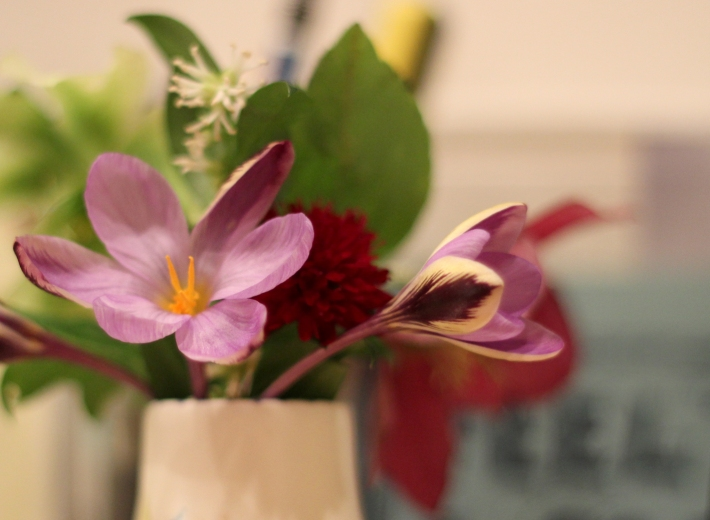 Imbolc Flowers 3 2016