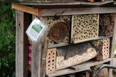 Princezzinnen Garten solitary bee habitat