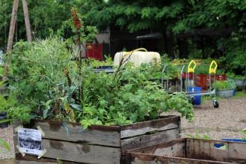 Princezzinnen Garten wooden garden
