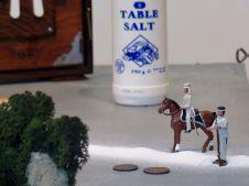 common salt_figures by salt line_dw pic