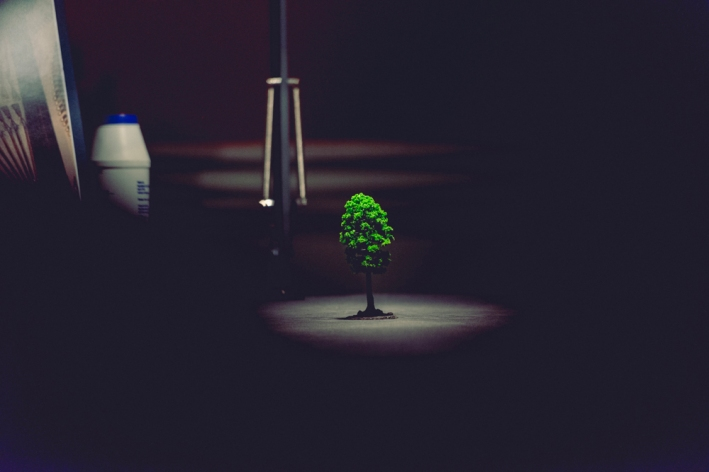 A model tree that is very bright green sits under a spotlight on the Common Salt table